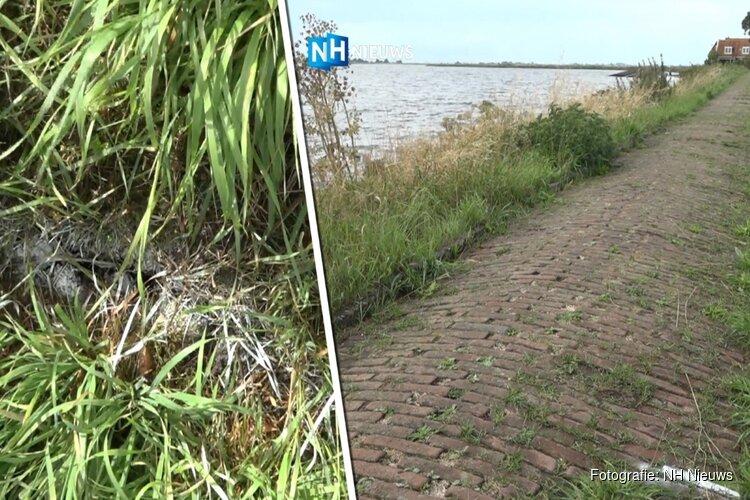 Inspecteurs Rijkswaterstaat ontdekken scheuren in dijken Marken